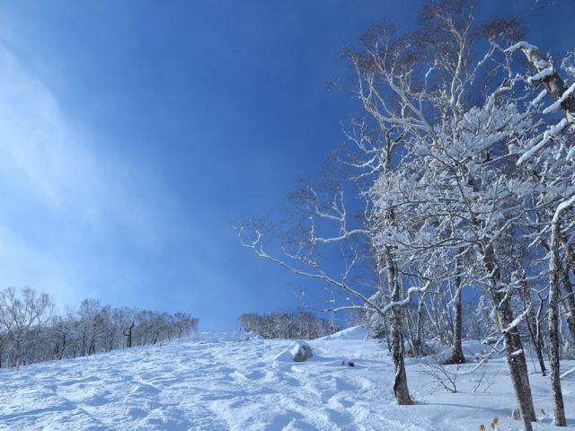 晴天率70パーセント以上の美しい山。非常に滑りやすく魅力的なゲレンデです。