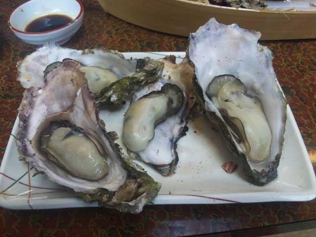 三重といえば海鮮!!海女さんが獲ってきたとれたて新鮮な海鮮類を、網焼きで食べる!!