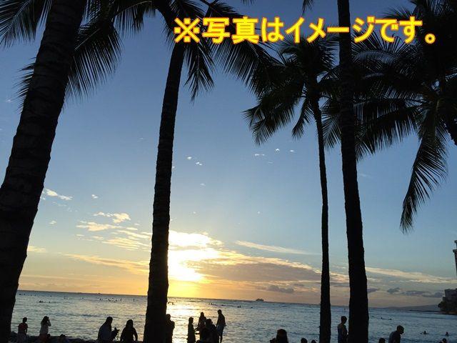 7月中旬〜8月下旬はサタダーフラ(昼・夜のフラダンスステージ)でハワイ感をたっぷり味わう!