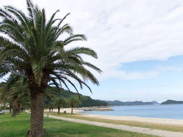 瀬戸内海のハワイ☆毎年6月からはアロハビス始まります!