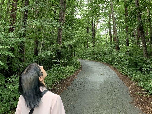空気が綺麗なリゾート地。周辺は緑がいっぱいです。マイナスイオンたっぷりです。