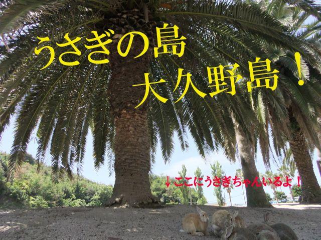 ◆うさぎの楽園
