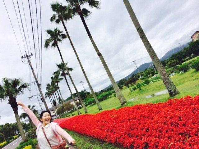 勤務先周辺にてこーんな南国ポイントもあります。椰子の樹・菜の花・ハイビスカス咲いてます