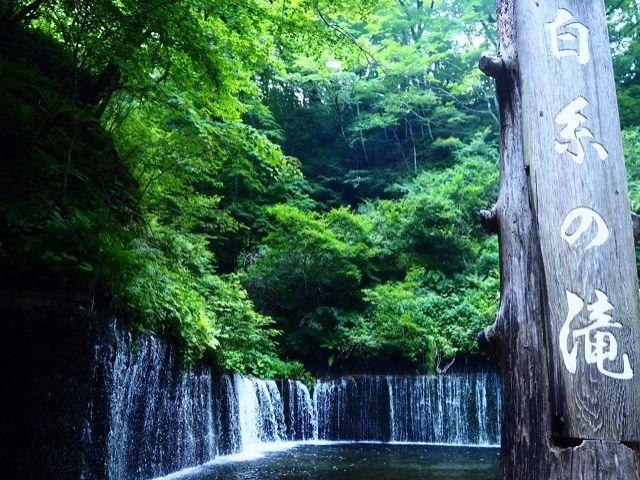 カフェだけでなく、自然を楽しめるのが軽井沢の魅力です。
