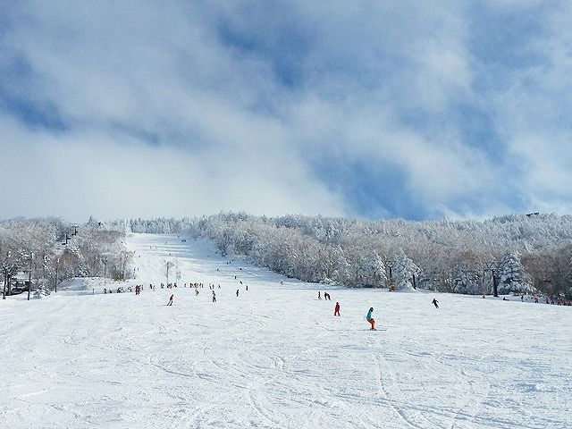 スキーやスノボだけでなく雪を見るのも冬の醍醐味ですね。