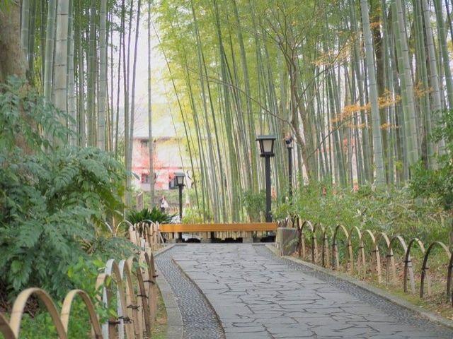 竹林の小径も有名