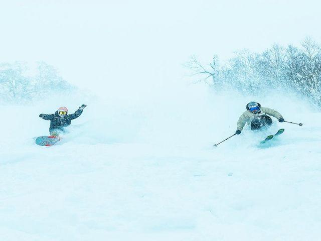 Japan's Best Ski Resort最優秀賞を受賞した最高のパウダー!
