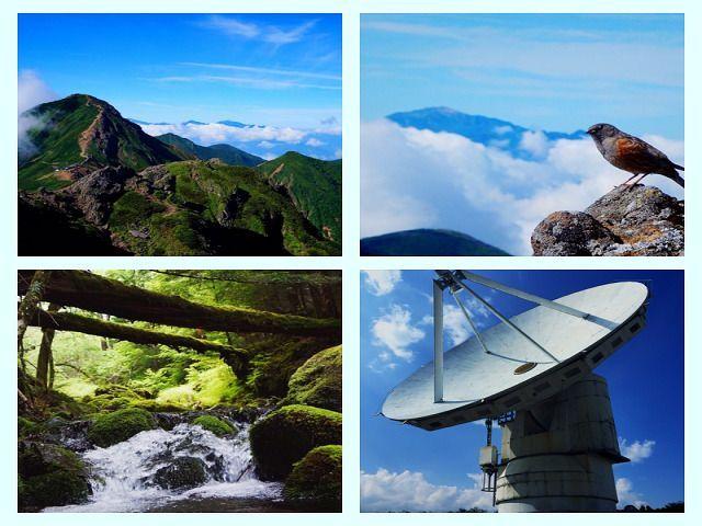 八ヶ岳は自然と観光スポットたくさん!!