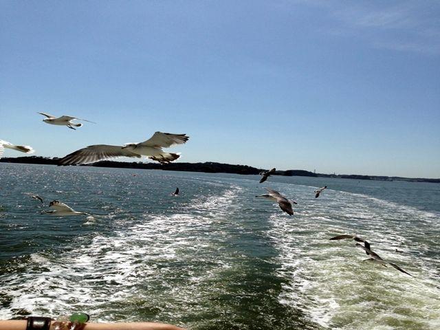 〜松島の魅力その2〜海も目の前!コンビニや公園など様々な施設が有るので便利です♪