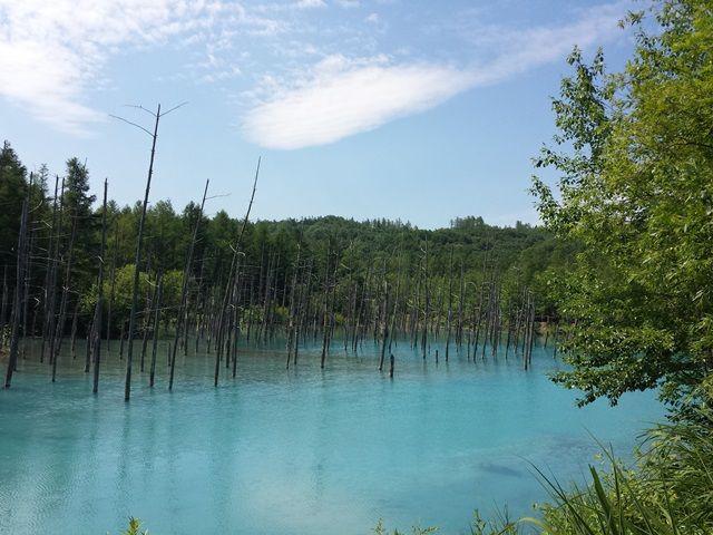 観光スポット「青い池」