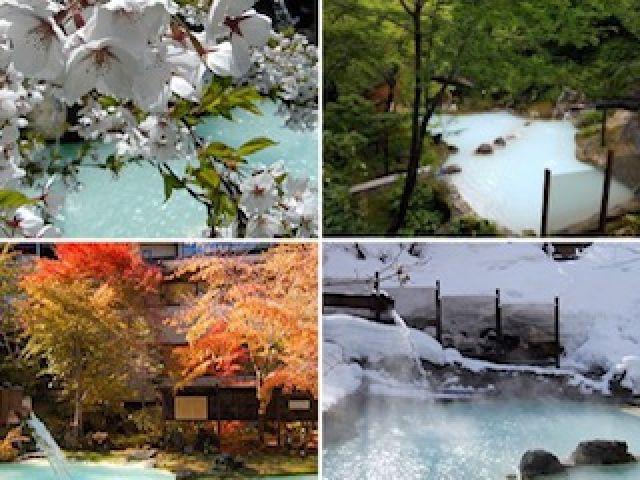 木々に囲まれ自然たっぷり★温泉から四季折々の景色が楽しめます♪