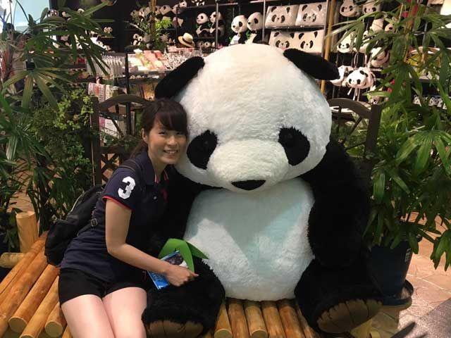 パンダ!!!!今や和歌山の代名詞と言っても過言ではくらいの人気のパンダ(*^^*)