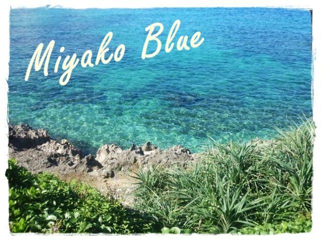 これが噂の・・・Miyako Blue!!