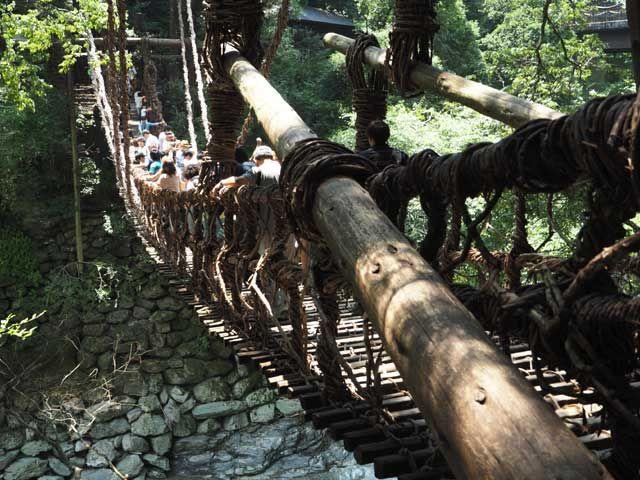観光名所かずら橋(^^)行くところはたくさんありますよ〜!!