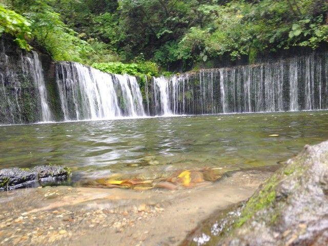 有名な「白糸の滝」距離はありますが機会があれば是非!