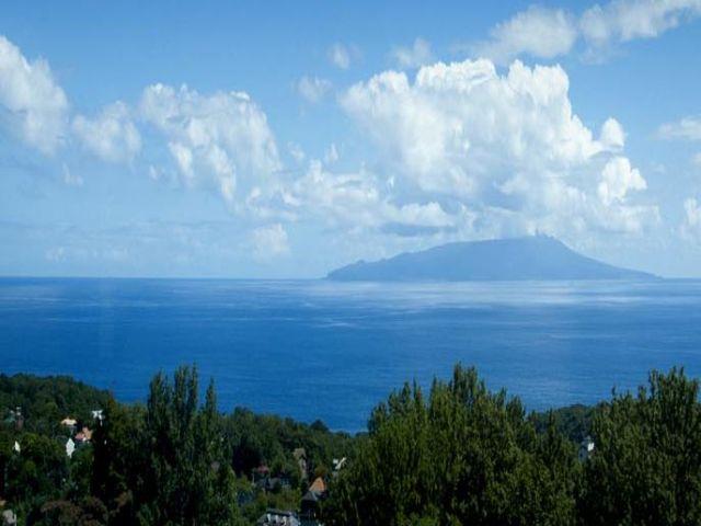 緑の自然と青い海を楽しめるのが特徴的な伊豆高原エリアです!