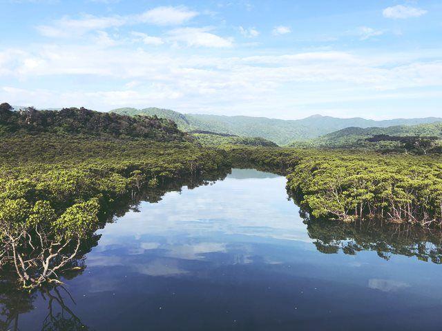 こんな圧巻の景色も西表島ならでは!