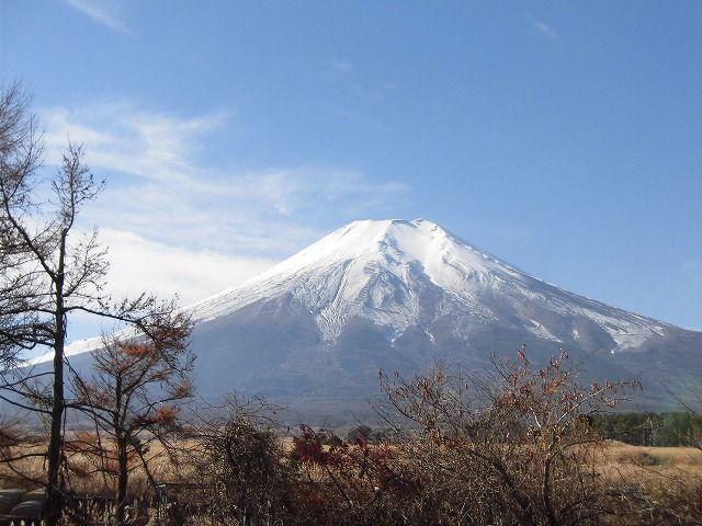 山中湖にある富士山の清々しい空気に包まれた高原リゾート♪日本一のパワースポットです!