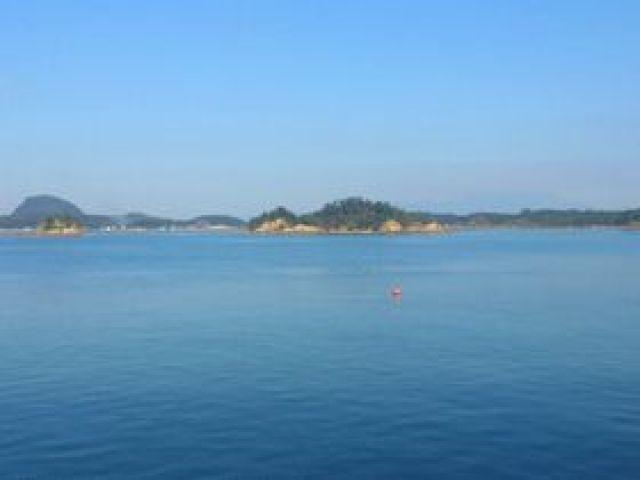きれいな海♪イルカウォッチング、ダイビングなどもできますよ!