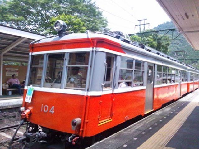 見所多数の箱根。箱根登山鉄道やバスで観光地巡りもしやすいです!