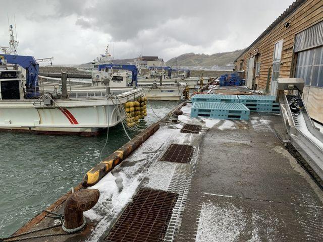 ☆目の前には海が広がります☆漁業に興味がある方はぜひ!