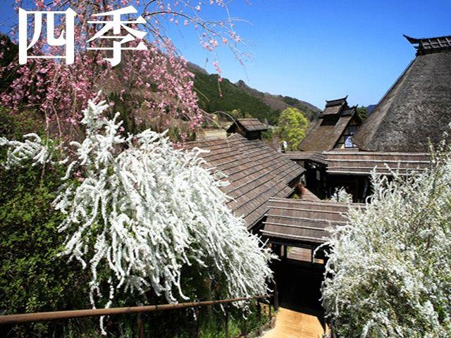 春は桜。夏は緑葉。秋は紅葉。冬は雪景色。日本の美しい四季が顕著にあらわれます。