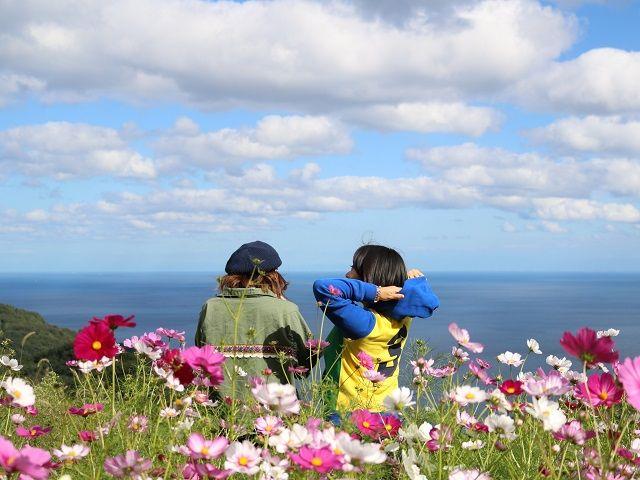 海の見える丘では、綺麗なお花と海の絶景を楽しめます♪インスタ映え間違いなしです☆
