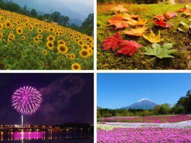 派遣スタッフも多く人間関係抜群◎ 東京から行きやすく豊富な自然を感じられるのは魅力的☆